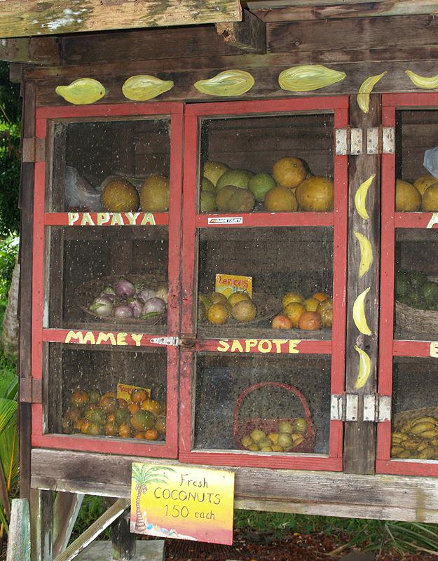 Janelle - fruit & veggie stand 2