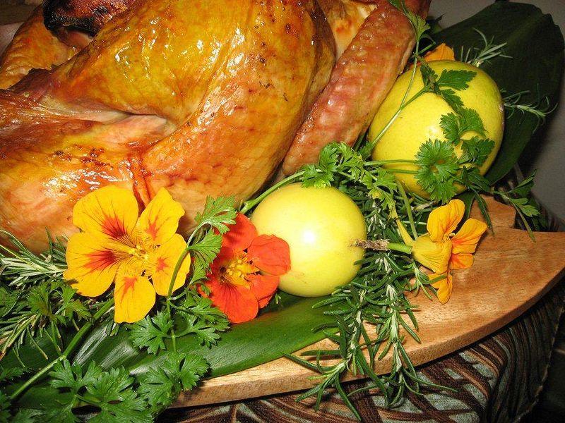 Thanksgiving - turkey closeup 1