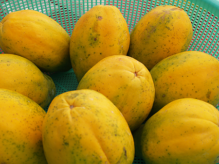 Hilo Coffee Mill - FM - papayas