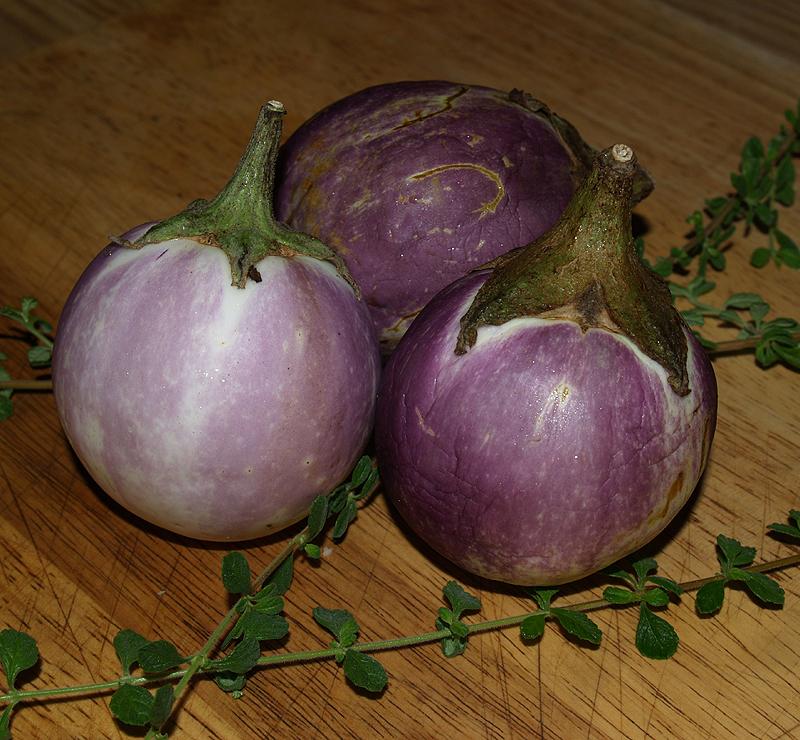 Janelle - mini eggplants