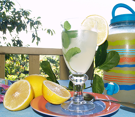 Meyer lemonade 1 sm