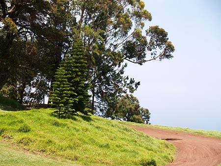 Kahua Ranch - the road to....... sm