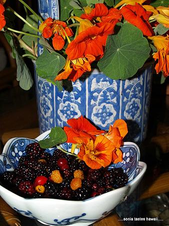 Nasturttiums and berries