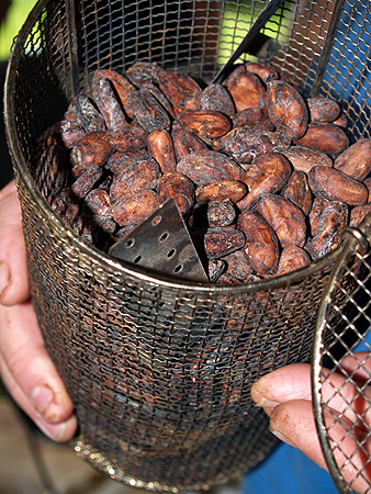 Cacao - dried seeds in basket ready for roaster sm