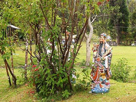 Volcano - Ira Ono's Volcano Garden Arts Gallery grounds