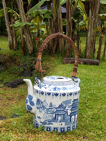 Volcano - Ira Ono's Volcano Garden Arts Gallery grounds teapot