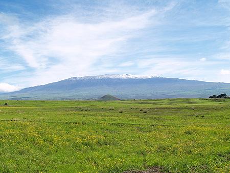 Snow on Mauna Kea - Hwy 190 - 1-8-11