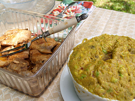 Picnic at the zoo - chicken and guac