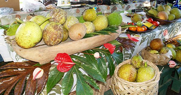 Breadfruit Fest - demo tent setup md