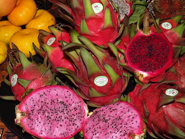Taste - Adaptations - dragon fruit & tangerines