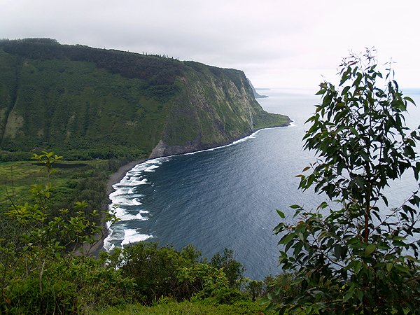 Waipio Valley from the lookout