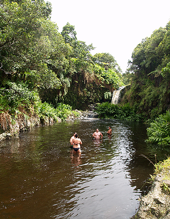 BDay - Waipio Rim Tour falls -swimming pond 2