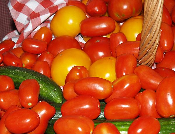 Taste - WOW Tomatoes