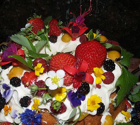Girls tea - Fairy Cake 5