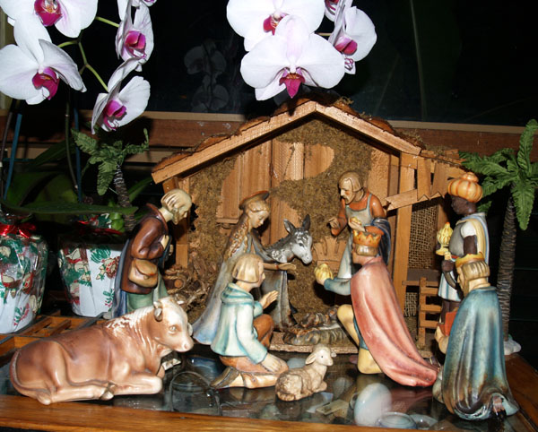 Christmas 07 - Orchids & Nativity 1