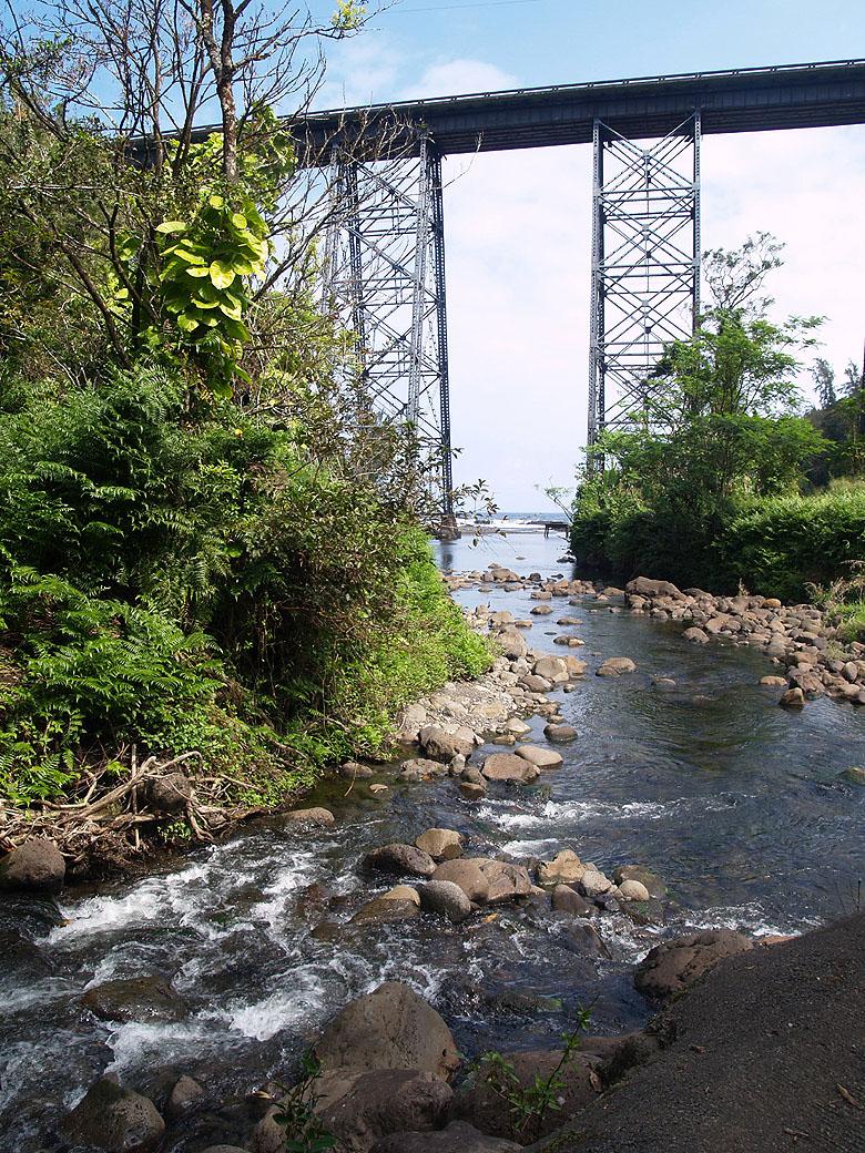 Hakalau Gulch 6 - stream and bridge