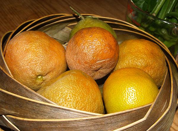 Rangpur Limes sm