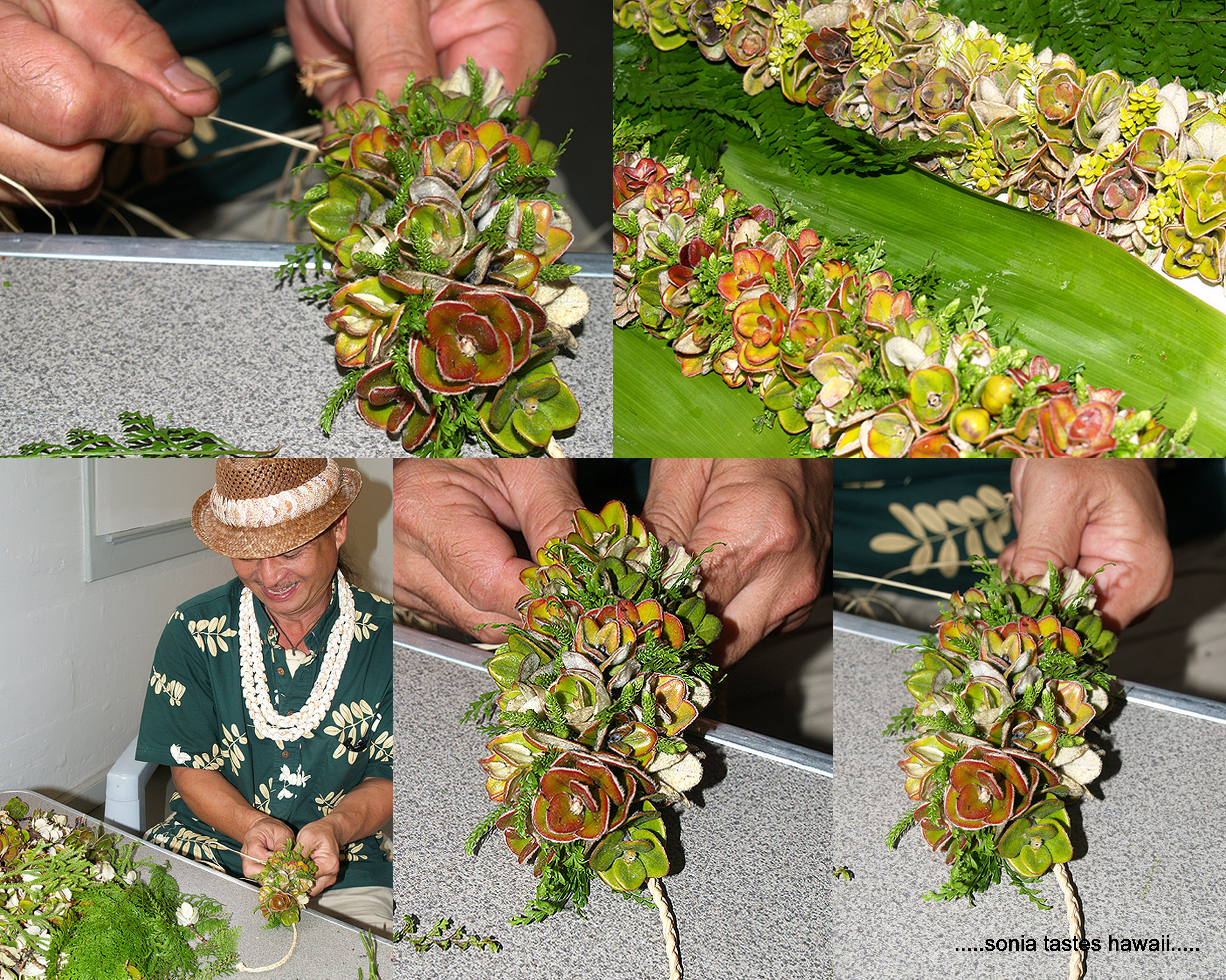 Sonia tastes hawaii may day is lei day in hawaii randy lee demonstrated throughout the day how to weave different style lei lei can be made of almost any material of course flowers greenery seeds izmirmasajfo