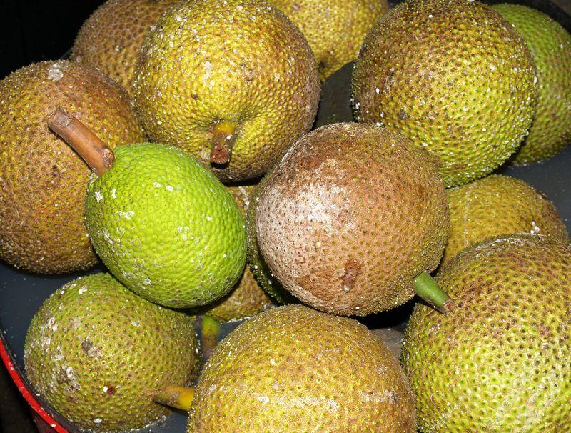 Breadfruit - asst in basket