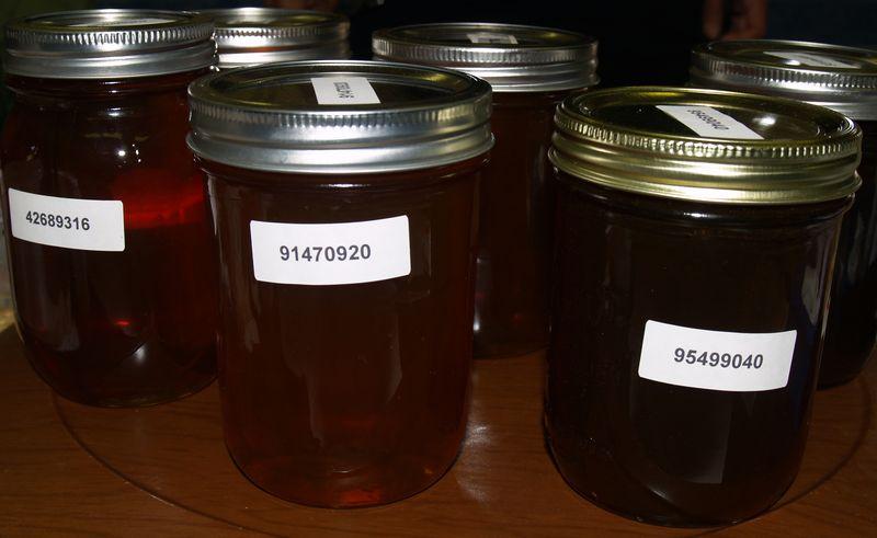BIBA - liquid samples - dark