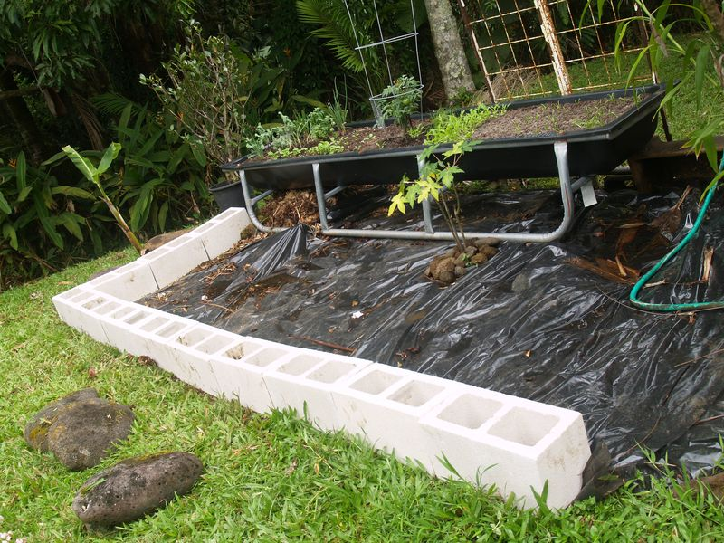 Pig trough planting area 4 - w blocks