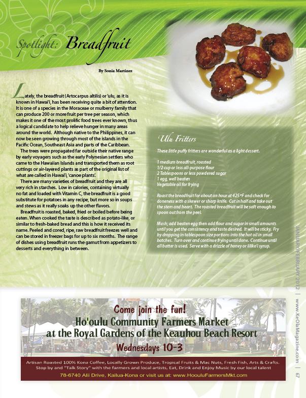Ke Ola - 1 Breadfruit Fritters