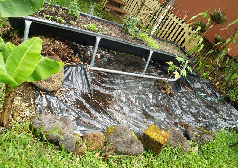 Pig trough planting area 2