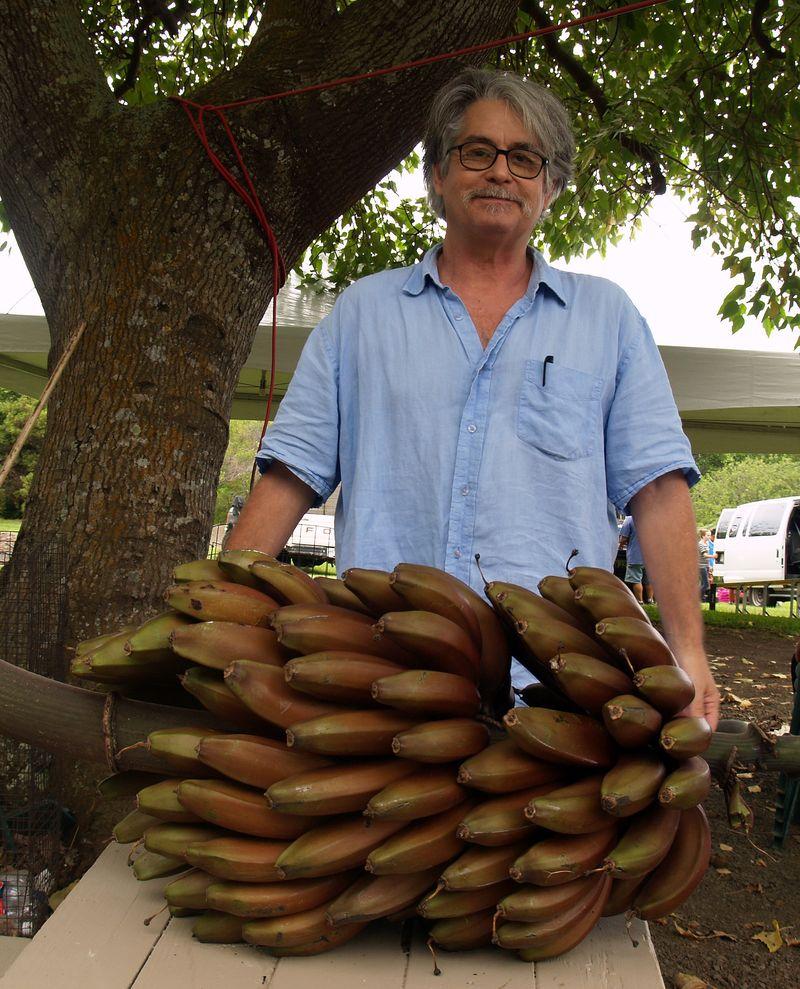 Breadfruit 2012 - Cuban Red banana rack - ABM