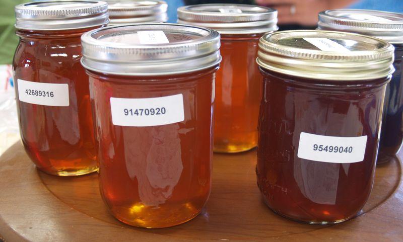 BIBA - liquid samples - light