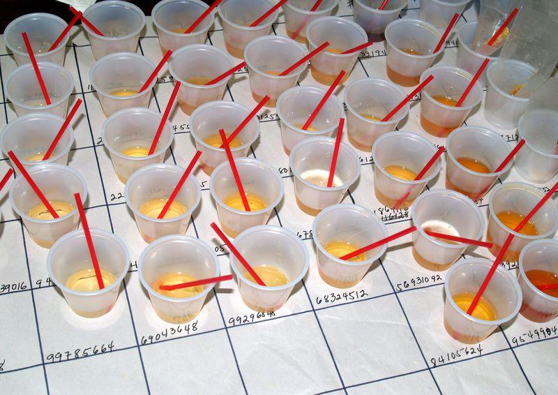 BIBA - Honey samples on the grid