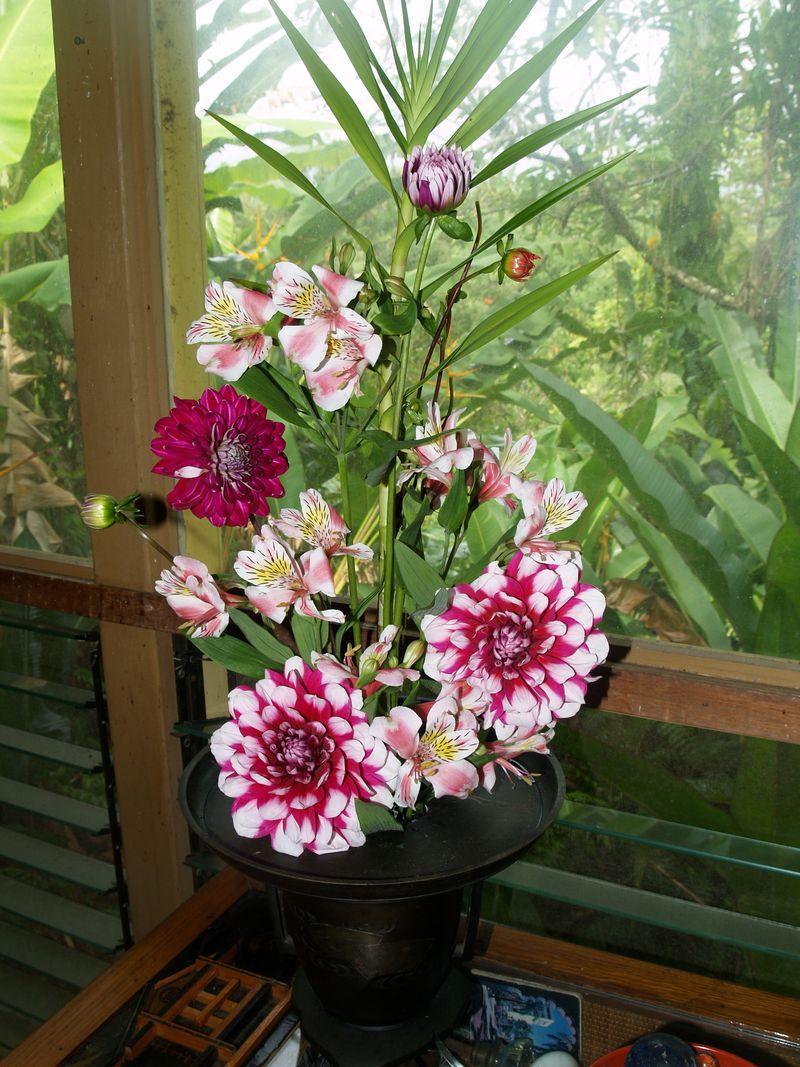 BD - flowers in LR