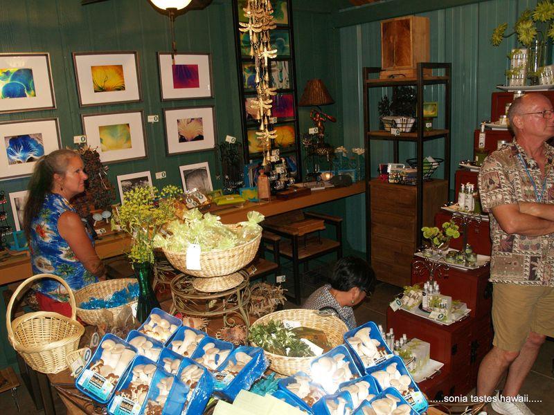 SFH - Mushroom farm - gift shop