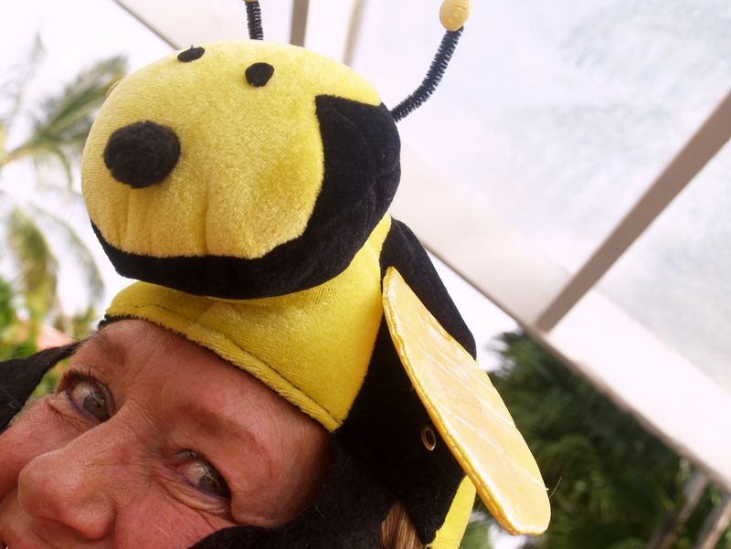 Bee in her bonnet 2