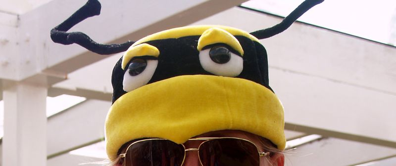 Bee in her bonnet 3