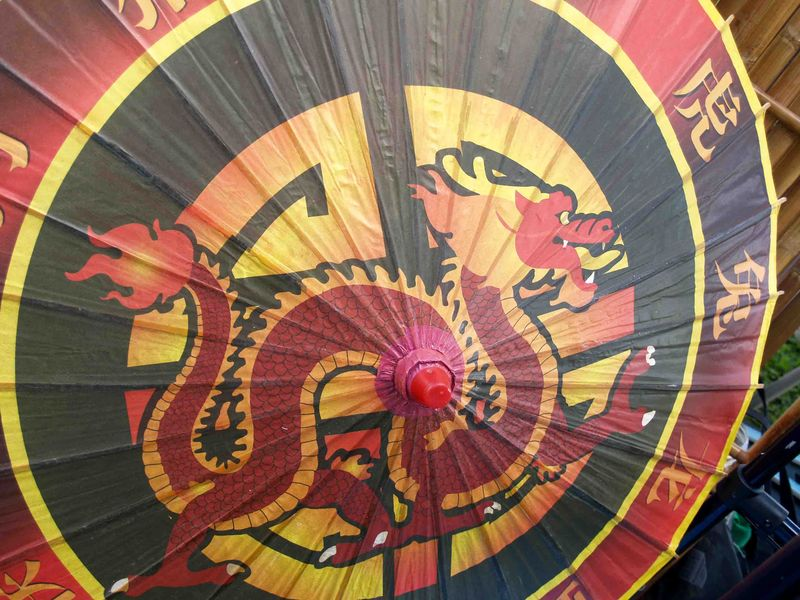 CNY 2014 - Dragon umbrella