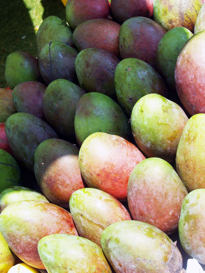 6th Mango Fest - CC - Mangoes