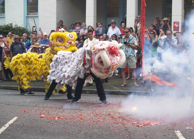 CNY 2014 - Lion dance 1
