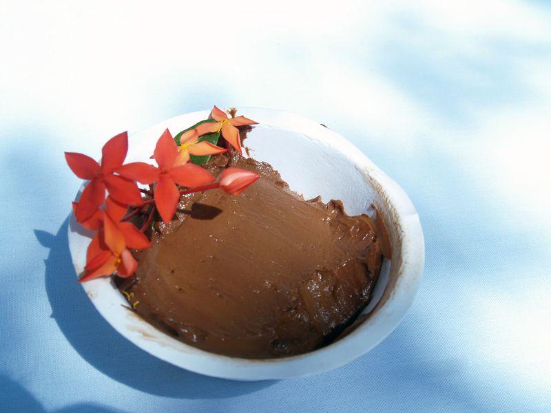 Avo Fest - Raw Chocolate Avocado Pudding