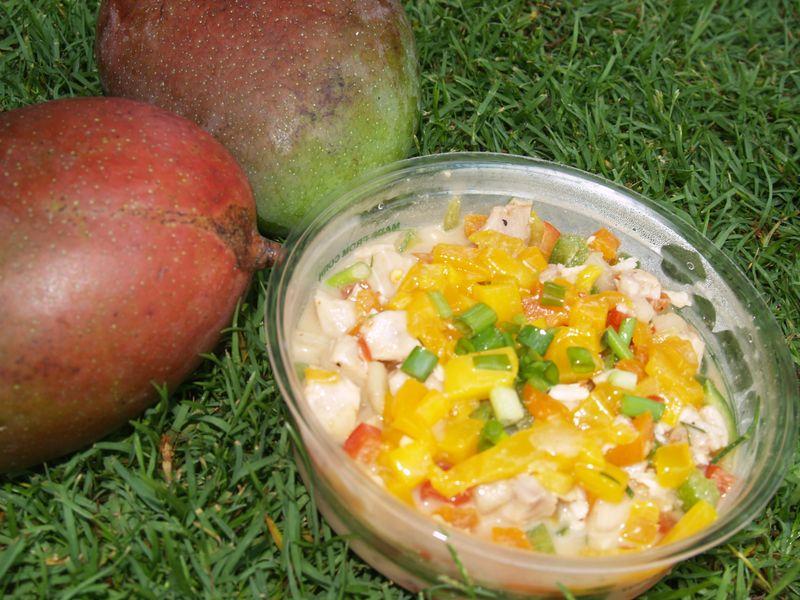 6th Mango Fest - CC - Mango Ceviche