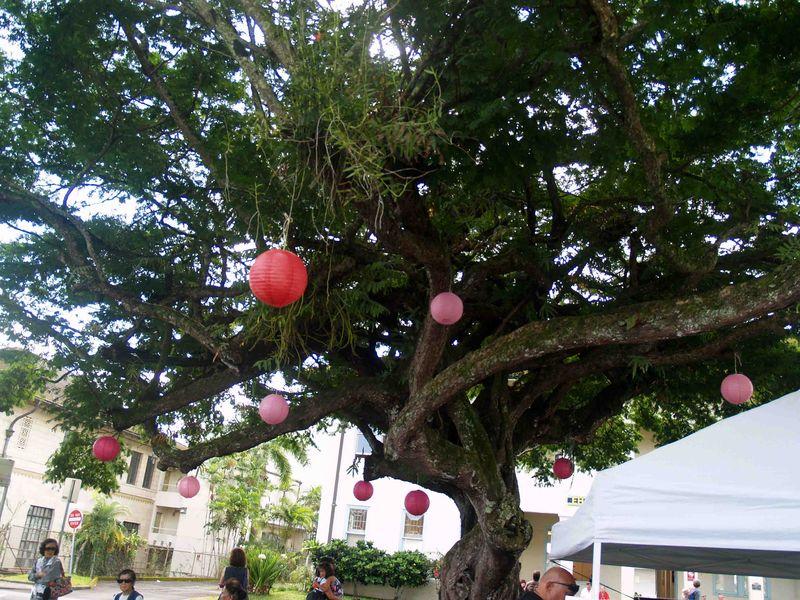 CNY 2014 - Tree & lanterns