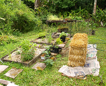 GARDEN - overview - with bale