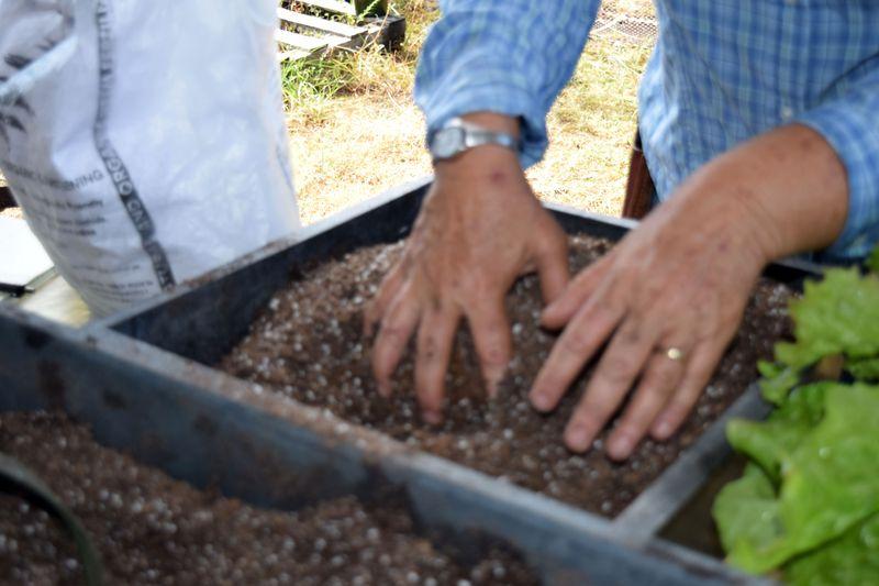 Gardening - Mixing Neem