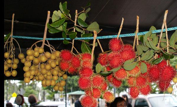 Farmers Market - Longans & Rambutan