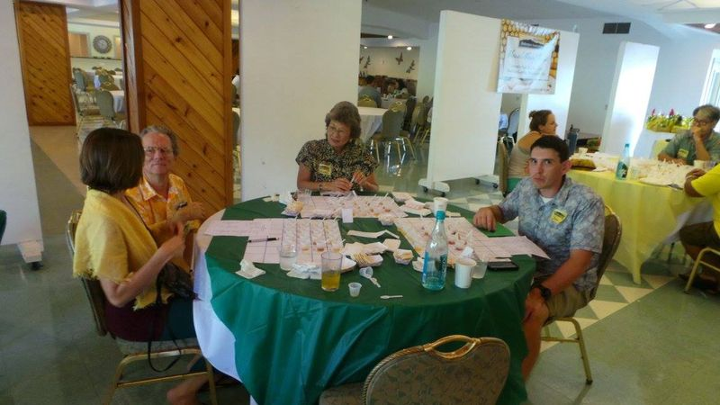 Honey Challenge - green table