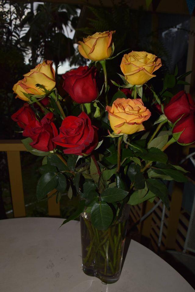 2016 Bday roses 2