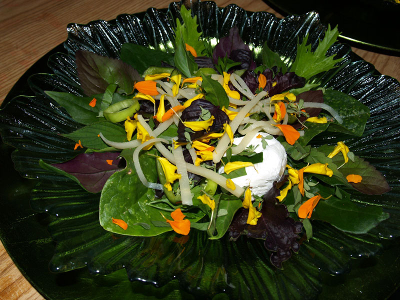 Bamboo Shoot - Salad jpg