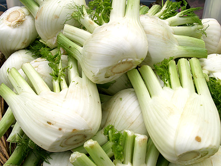 Waimea HFM - Fennel  - Honopua Farm - sm