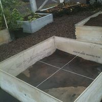 Planter boxes 2