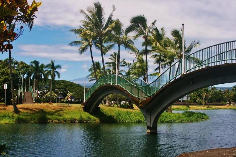 Wailoa State Park bridge Sonia Martinez..jpg3