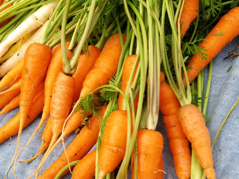 Waimea FM - Carrots